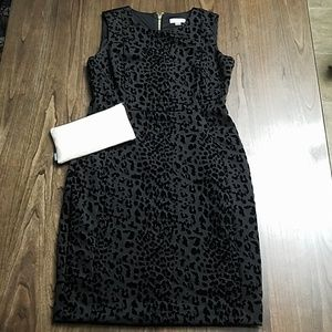 Calvin Klein Black Dress 14
